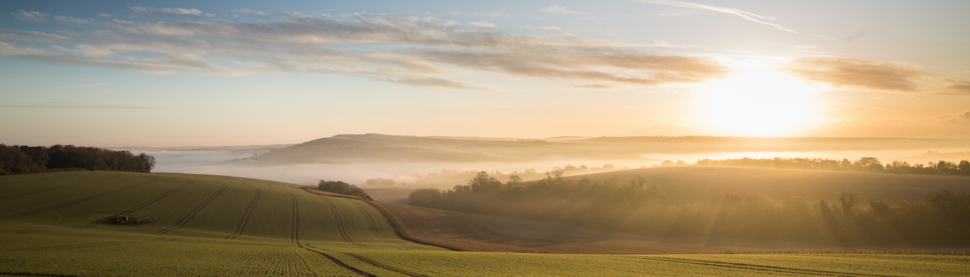 South Downs Generations